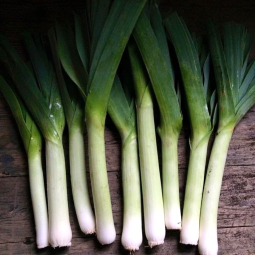 Hari Hari Curry Spiced Leeks