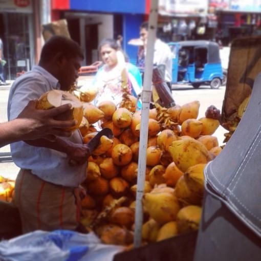 Hari Hari Sri Lanka Thambili Coconut