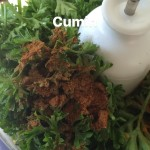 Adding cumin to Salsa