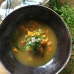 Hari Hari Vegan Dhal Spice Soup